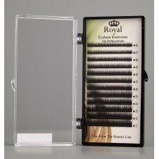 Royal Eyebrow Extensions Mix 0.10mm - Negru